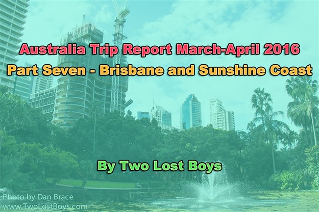 Australia March-April 2016 Trip Report, Part 7 - Brisbane and Sunshine Coast
