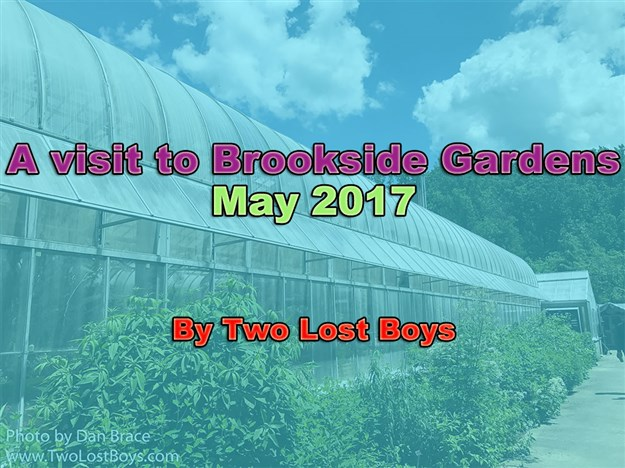 A visit to Brookside Gardens, MD, May 2017