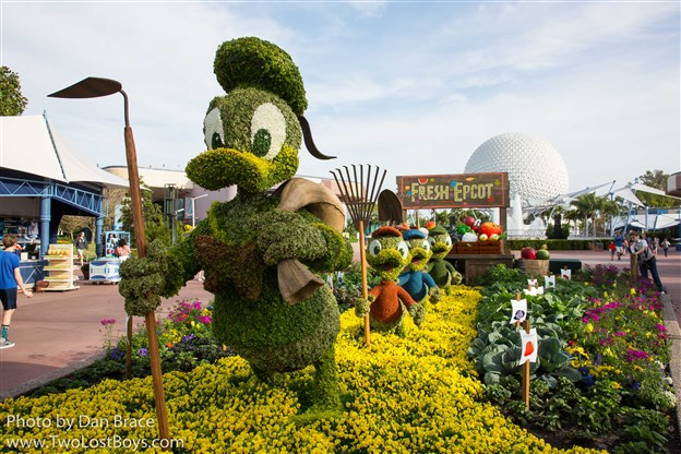 Epcot International Flower And Garden Festival 2017 Two Lost Boys Blog