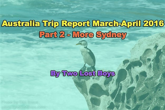Australia March-April 2016 Trip Report, Part 2 - More Sydney